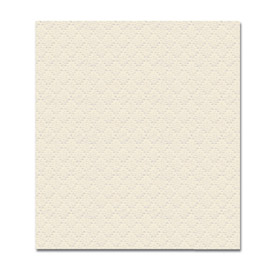 NAPKIN SATINE BEIGE FAST FOOD 1PLY 23X28 5X600 PCS