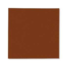 NAPKIN BROWN EMBOSSED SOFT 1PLY 23X24 5X750 PCS.